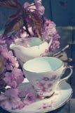美丽,英语,与日本樱桃树的葡萄酒茶杯开花 免版税库存图片