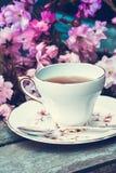 美丽,英语,与日本樱桃树的葡萄酒茶杯开花 图库摄影