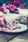 美丽,英语,与日本樱桃树的葡萄酒茶杯开花 免版税库存照片