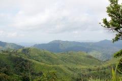 美丽绿色的山 库存图片
