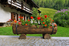 美丽alpien有花箱子甲板红色大竺葵的庭院 图库摄影