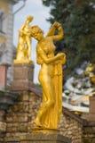 美之女神kallipiga金星 库存照片