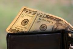 美元一百一个钱包 库存照片