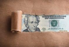 美元二十 免版税库存图片