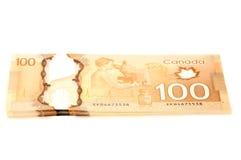 100美元加拿大人钞票 库存图片
