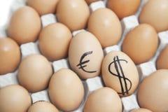 美元和欧洲标志在简单的红皮蛋围拢的鸡蛋在纸盒 库存图片