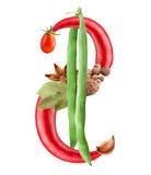美元的符号 免版税库存图片
