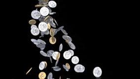 美元硬币龙头 向量例证