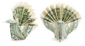 美元被隔绝的origami孔雀 库存图片
