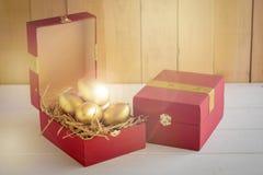 美元财务女孩暂挂装箱乐趣成功 在一个红色礼物盒的金黄鸡蛋 免版税库存图片