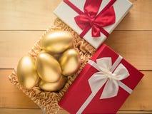 美元财务女孩暂挂装箱乐趣成功 在一个红色礼物盒的金黄鸡蛋 免版税库存照片