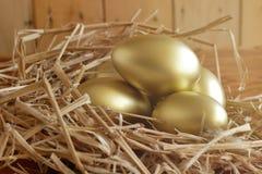 美元财务女孩暂挂装箱乐趣成功 在木背景的金黄鸡蛋 库存照片