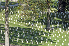 美军国家公墓 库存图片