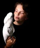 美冠鹦鹉摩罗加群岛 库存照片