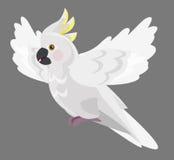 -美冠鹦鹉-被隔绝的动画片鹦鹉 库存图片