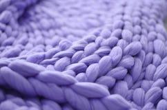美利奴绵羊的羊毛紫色毯子  免版税库存图片
