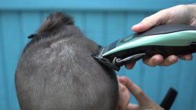 美发师剪在客户的项的头发有电剃刀飞剪机和梳子的 影视素材
