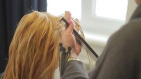美发师剪有长的金发的一名妇女 理发特写镜头 股票视频