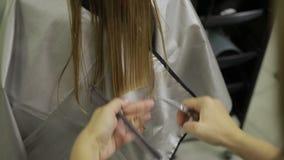 美发师缩短与剪刀的头发技巧 股票视频