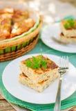 美味乳酪蛋糕(酸奶干酪烘烤) wiith草本 免版税库存照片