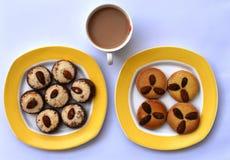 美味的可口新近地做的曲奇饼,好小休的完善的快餐 库存图片