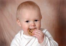 美味的曲奇饼 免版税图库摄影