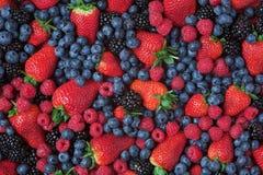 美味的浆果 免版税库存照片