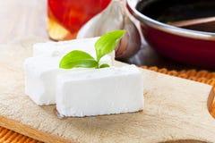 美味的白色乳酪 库存图片