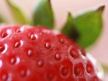 美味的草莓 免版税库存照片