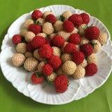 美味的莓果板材  库存照片