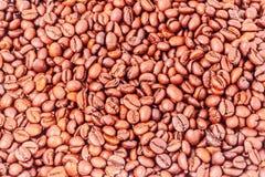 美味的coffe豆 免版税库存照片
