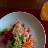 美味食物的沙拉 免版税库存图片