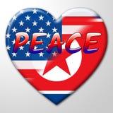美国人北朝鲜核和平旗子3d例证 皇族释放例证