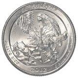 美国人四分之一硬币- el yunque国家公园 库存照片