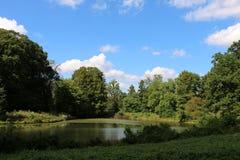 美国全国树木园 免版税库存照片