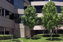 美国办公室 免版税图库摄影