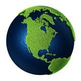 美国北部地球的草 向量例证