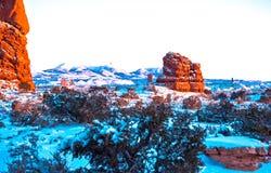 美国南西部公园 免版税库存照片