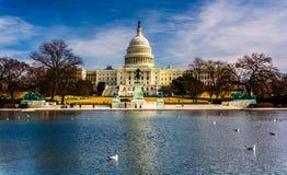 美国国会大厦和反射水池在华盛顿特区, 库存图片