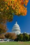 美国国会大厦大厦在秋天,华盛顿特区,美国 免版税库存图片
