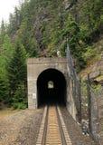 美国国家铁路公司通过盖纳隧道在蒙大拿 免版税库存照片