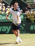 美国在戴维斯杯期间的网球员杰克・索克选拔反对伯纳德・托米奇 库存图片