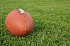 美国域橄榄球草 图库摄影