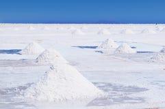 美国安地斯beautifull最玻利维亚 免版税库存图片