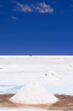 美国安地斯beautifull最玻利维亚 库存照片