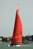 美国杯子S系列威尼斯世界 图库摄影
