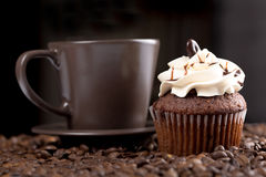 美国杯形蛋糕 免版税库存照片