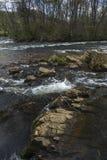 美国梧桐浅滩国家公园, Elizabethton, TN 免版税库存图片