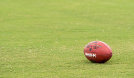 美国橄榄球联盟橄榄球 免版税库存图片