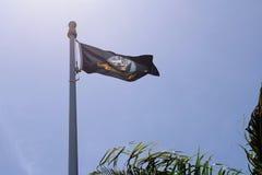 美国海军旗子 库存图片